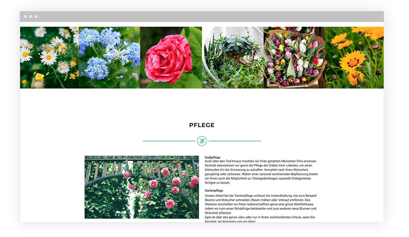 Screen der Website Franz Fink
